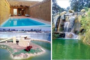 'أفريكا بارك» تستعير السياحة الإفريقية في أحضان الصحرا