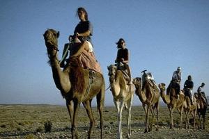 الإسبان يعوضون المنتجعات بالسفاري في مصر