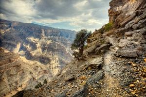 Faces & Places Photo Tour in Oman