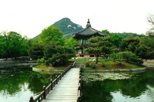 كوريا الجنوبية : 10 ملايين سنة 2012