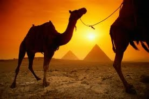 UNWTO welcomes signs of tourism recuperation in Egypt and Tunisia