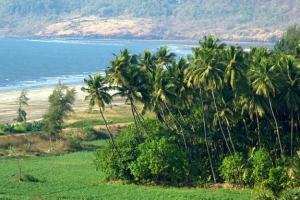 ارتفاع عدد السياح السعوديين المتجهين إلى الهند