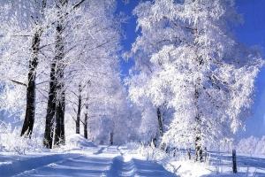 Lyon accueille le salon Destination neige